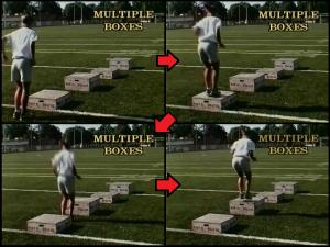Softball Tips