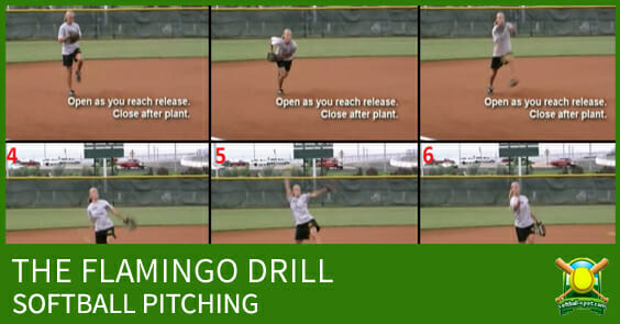 FLAMINGO DRILL SOFTBALL PITCHING